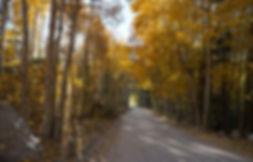north_lake_road_10-15-19.JPG