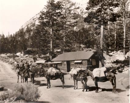 1930's Pack Train