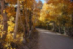 north_lake_road_two_10-15-19.JPG