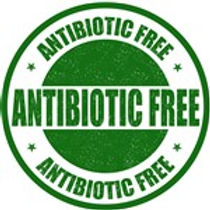 antibioticfree (150 x 150).jpg