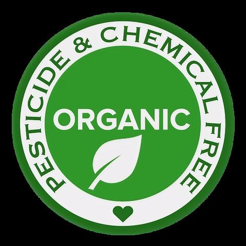organic-pesticide-free_edited.png