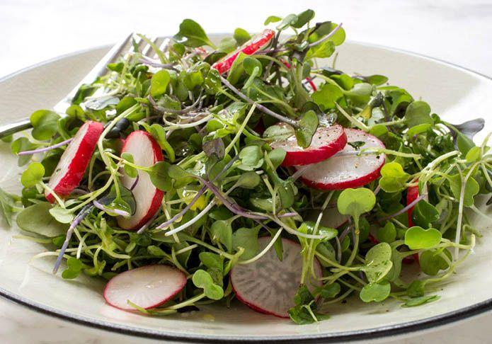 saladWithRadish-ffcff790.jpeg