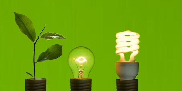 green-business-solaready-philippines