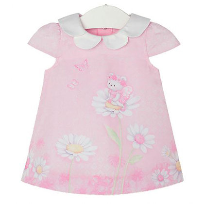 Baby Rose Printed Dress