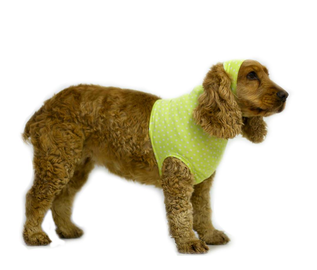 Бандаж для собак RELAV