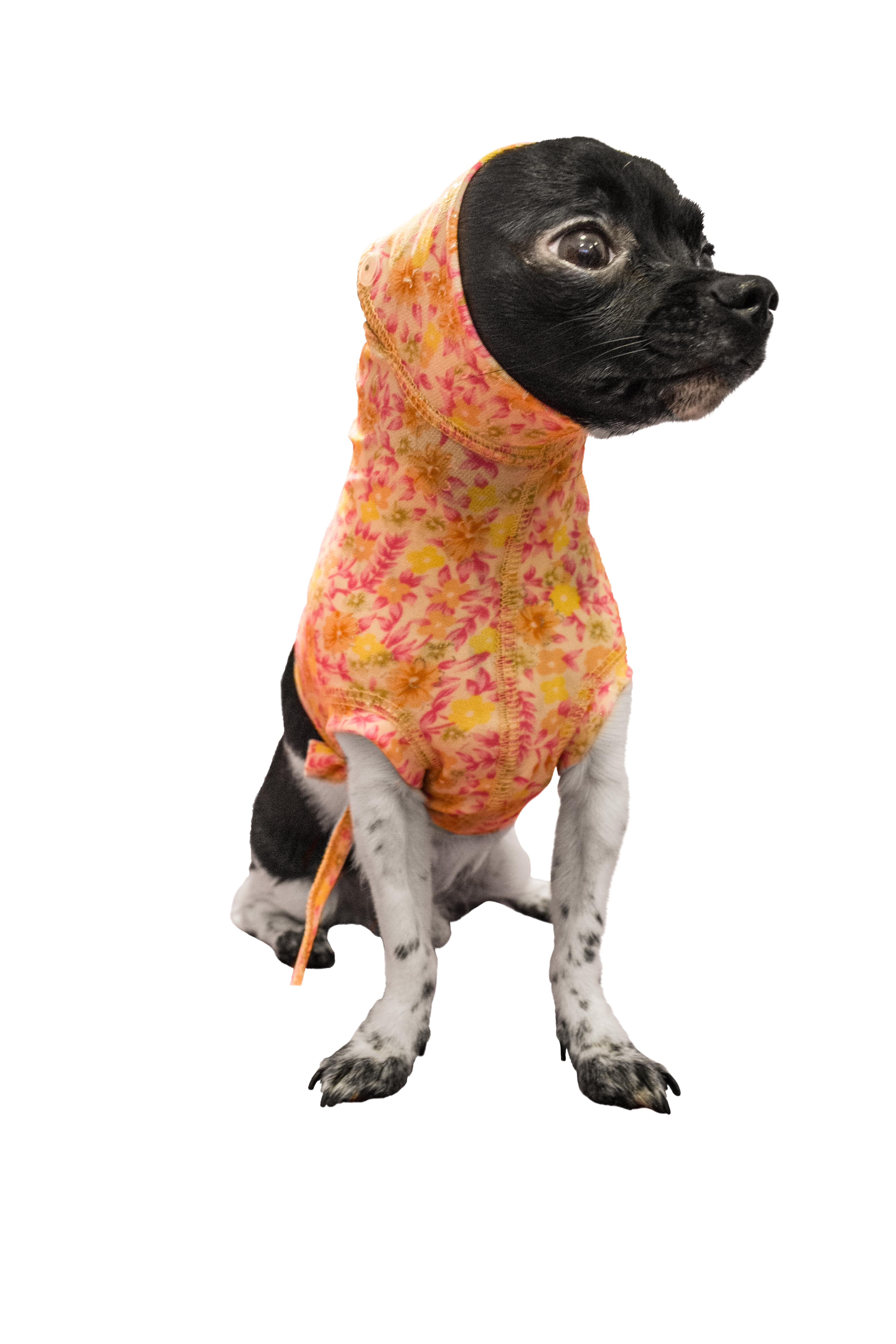 Попона для собаки