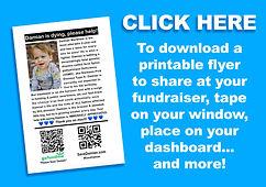 #SaveDamian - Flyer Download Button_edit