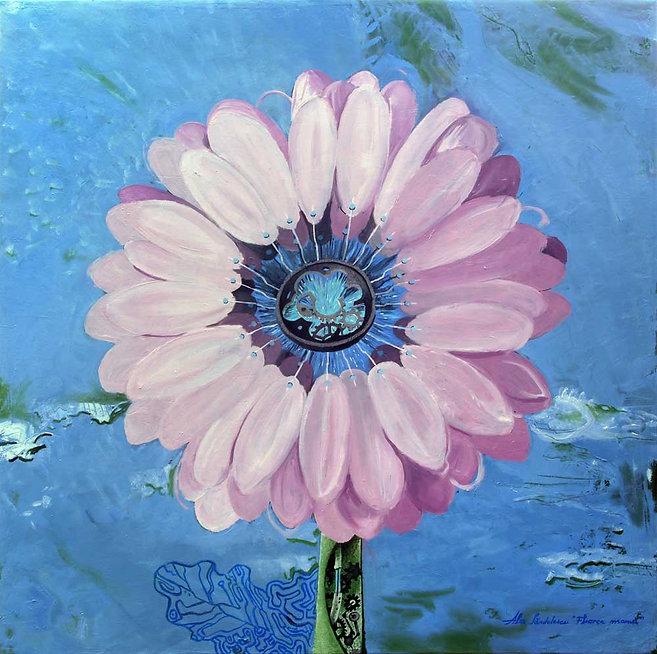 0-Floarea-mamei-mic.jpg