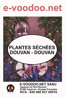 Plantes Séchées Douvan Douvan