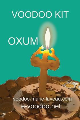 Voodoo Kit OXUM pour la fortune