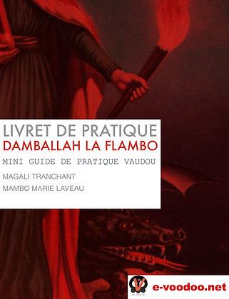 Livret de Pratique Vaudou Damballah La Flambo