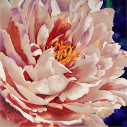 Blooming Peony - 3