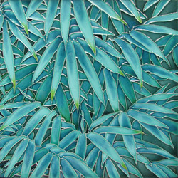 Bamboo - 1