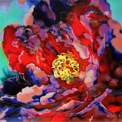 Blooming Peony - 1