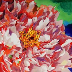 Blooming Peony - 2
