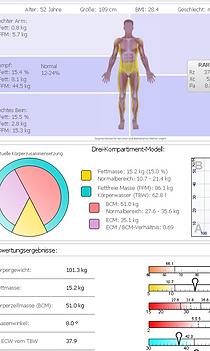 Muster BIA Segmentalbericht.png