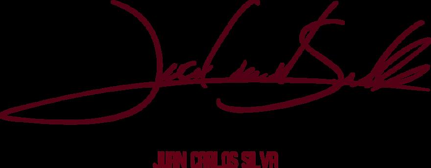 Logo juan carlos silva.png