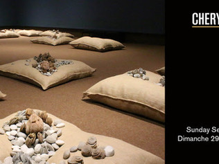 Cheryl Wilson–Smith 21 Pillows Exhibition | Ottawa School of Art Orleans Campus