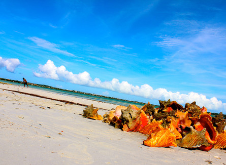 Turks & Caicos Travel Review / Steph Limage For Sunrise Airways