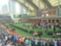 HK View shot winner.jpg
