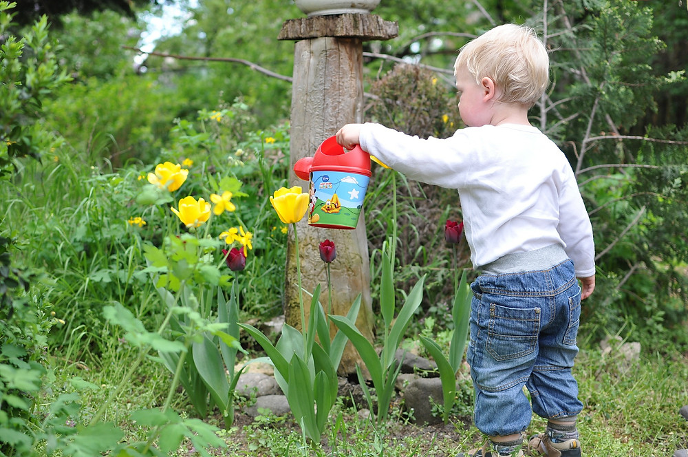 5 trucs pour initier votre enfant au jardinage | Embellissement RDL