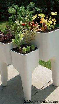 Inspiration jardin : potagers en pot | Embellissement RDL