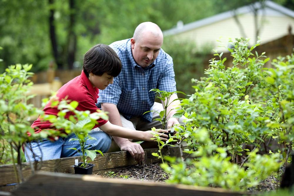 5 trucs pour initier vos enfants au jardinage | Embellissement RDL