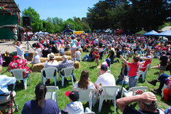 Crowds at the 2017 Buninyong Festival