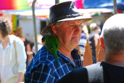 Farmer Darryl and Polly the Parrot - 201