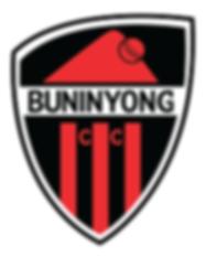 buninyong_cricket 08.png