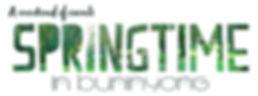 spring_facebook_logo.jpg
