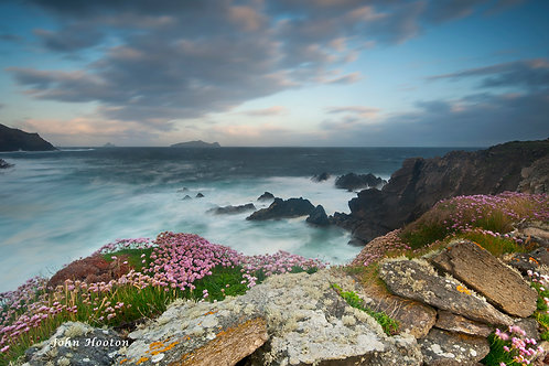 Clogher Head 7