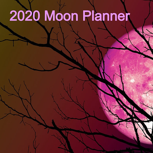 2020 Moon Planner -