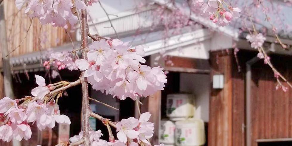 Sake & Shochu Tasting