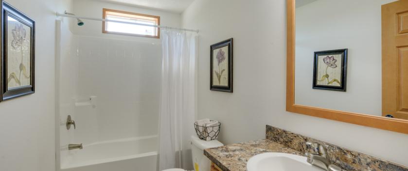 Blue Ridge Guest Bathroom