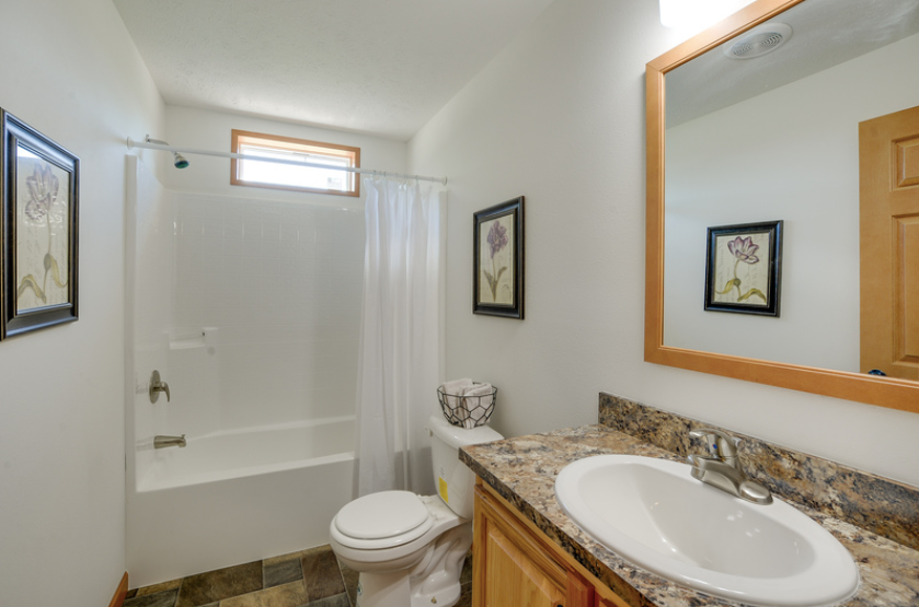 Blue Ridge Guest Bathroom