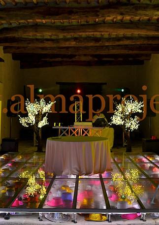 ALMA PROJET 24/7 @ Lucca (Private Venue)