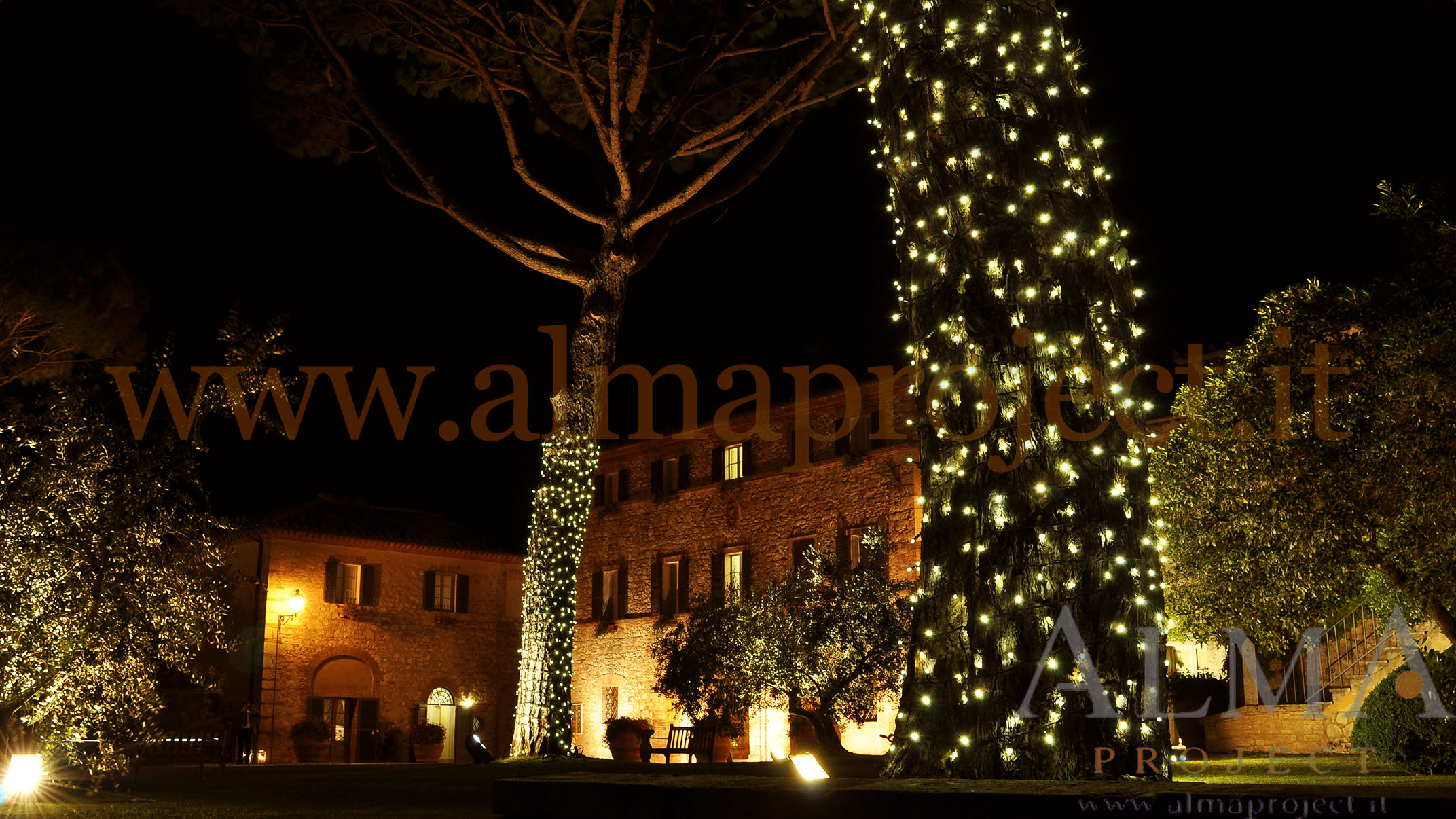 ALMA PROJECT _ Borgo San Felice - Piazza - Fairy light trees - disano - 2