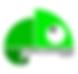 thumbnail_cameleon-team-agency-LOGO-PNG2