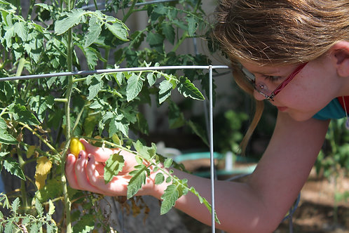 May 6th, Thursdays- Cooking and Gardening; One Day- $35
