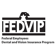 FEDVIP vision3.png