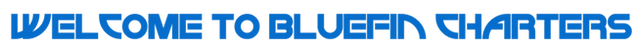 BLUEFIN-LOGO-03-03-1024x81.png