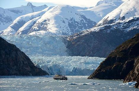 celebritysolstice endicott glacier.jpg