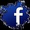 Facebook Button | Londynwebs International Marketing Group |