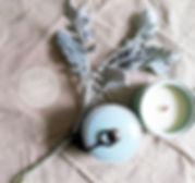 CERA Spring ceramic.jpg