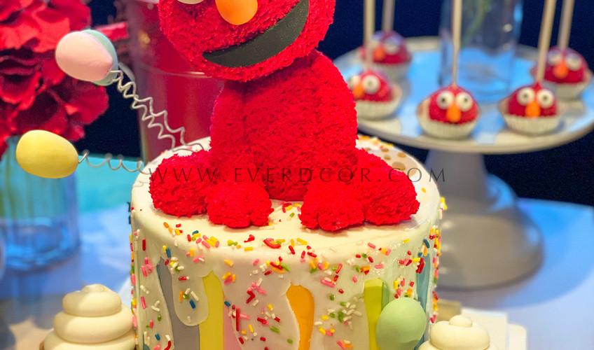 Elmo party-6