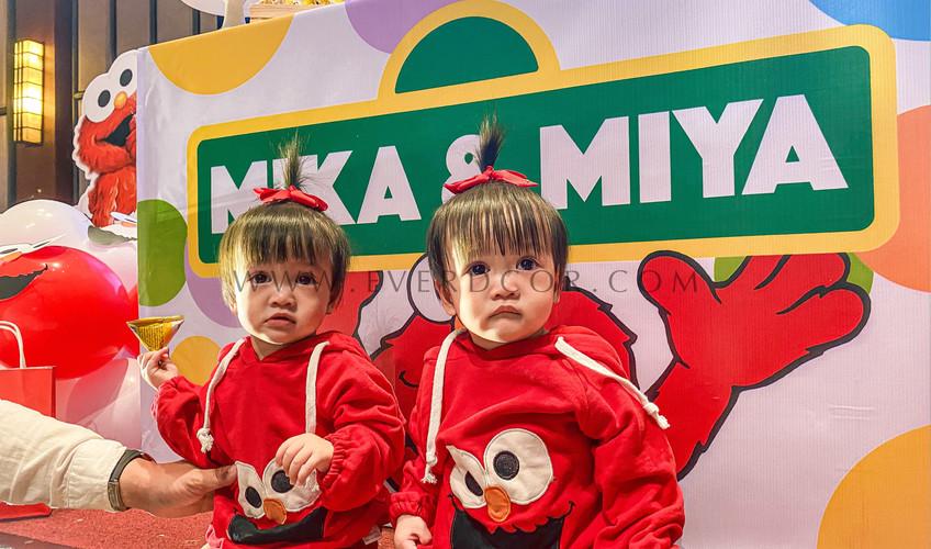 Elmo party-4