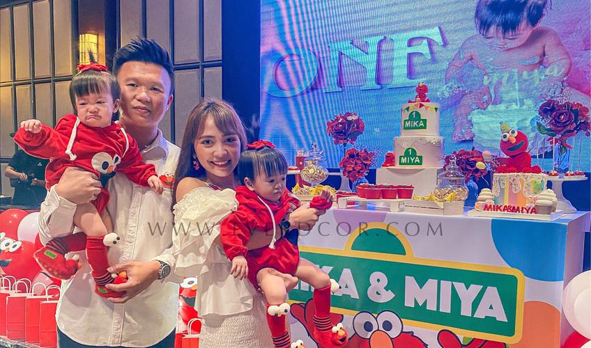 Elmo party-3