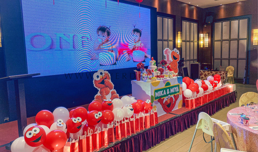 Elmo party-7