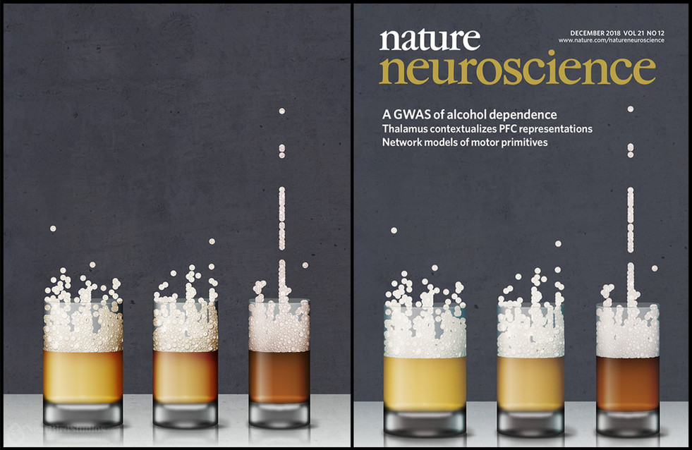 Nature Neuroscience Cover